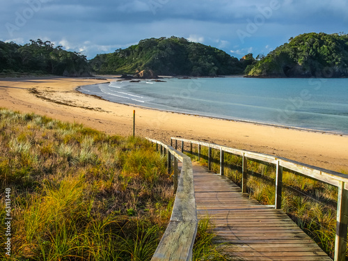 Entrance to a Deserted Beach in Northland, New Zealand