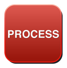 process Button