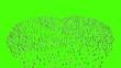 People form hearth. Green screen.