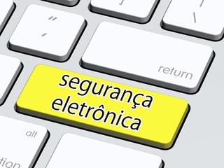 segurança eletronica4