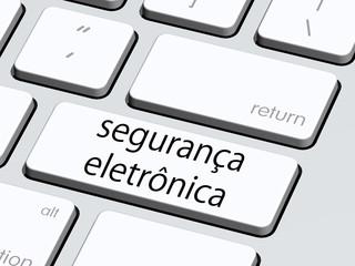 segurança eletronica5