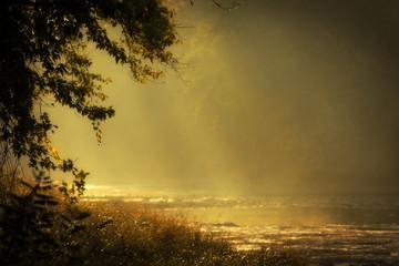 River Sunrise Glow