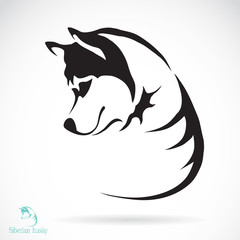 Vector image of a dog siberian husky
