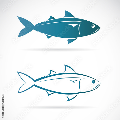 Vector image of an mackerel
