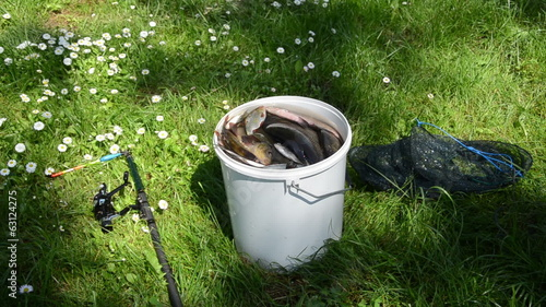 grass stands bucket full of fish lying the sieve and rod