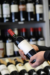 Choose and buy a bottle of wine in a specialty store