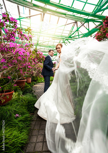 groom and bride with long veil walking among blooming trees