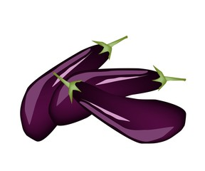 Heap of Fresh Purple Eggplant on White Background