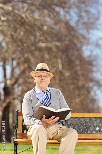 Senior reading a book in park on sunny day