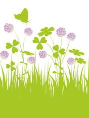 floral,grün,klee kleeblatt,blüte,landschaft,hintergrund,glück,3d