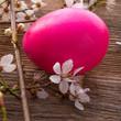 Obrazy na płótnie, fototapety, zdjęcia, fotoobrazy drukowane : Easter egg