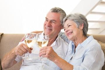 Senior couple sitting on couch having white wine