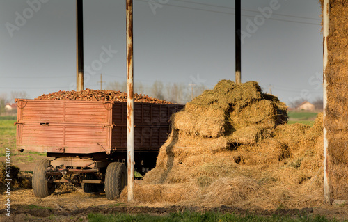 Storage of hay bales