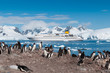 Antarctica penguins and cruise ship - 63138255