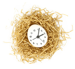 Clock dial on white egg inside nest isolated