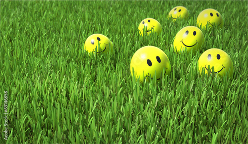 Smile on the grass