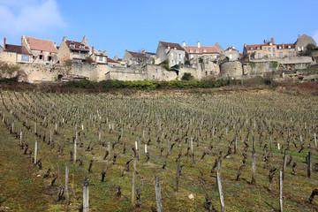Vignoble français