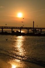 Sonnenuntergang an der Seebrücke mit Möwen