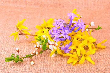 Spring flower composition on sackcloth background