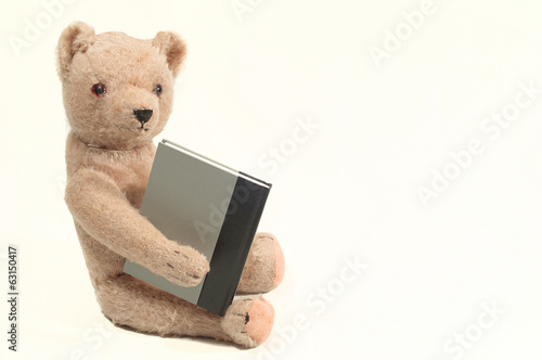 Antique Bear With a Book
