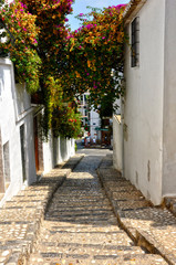 Altea, Alicante, ciudades turísticas de España, flores