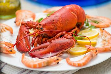 Astice rosso su un piatto contornato da gamberi