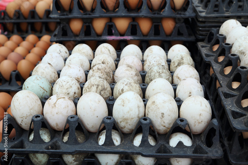 White eggs tray in the market