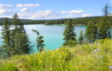 Dickey lake Montana