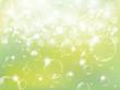 新緑 空 光
