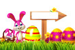 easter bunny with sign and egg