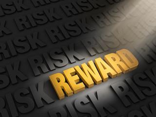 Highlighting Rewards Versus Risk