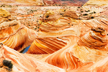 The Wave, rocky desert in Arizona