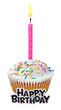 cupcake with a birthday candle
