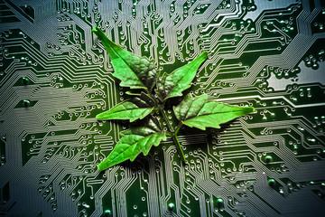 green leaf on computer circuit board / green it