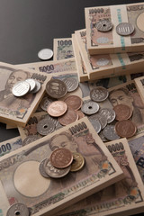 色々な紙幣
