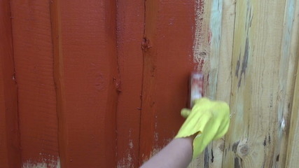 painting wooden plank farm  house wall with paintbrush