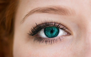 Human with emerald colored eye with reflection. Macro shot.