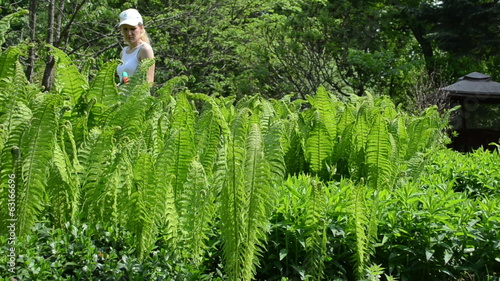 Attractive woman watering fern plants with hand sprayer