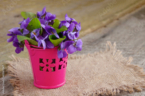 Small bouquet with meadow violets in a bucket.