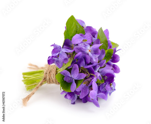Small bouquet with meadow violets.