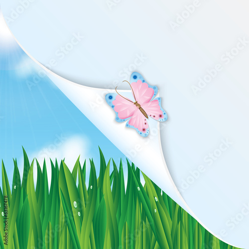 Colorful butterfly on a background of green grass and blue sky a