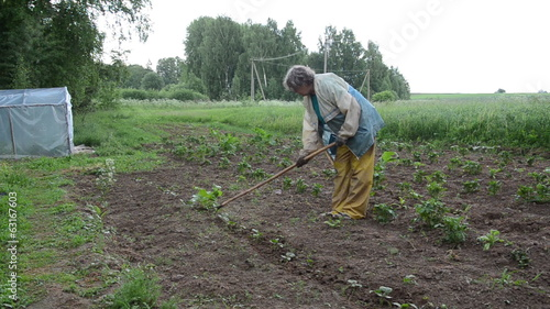 senior woman blanch newly planted cucumber seedlings