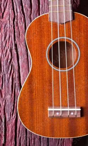 ukulele on wood background