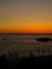 DFL Sunset-1