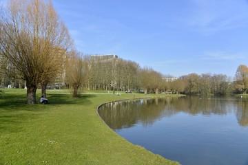 Grande pelouse à l'étang d'Anderlecht