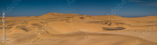 Panorama of the Dunes of the Namib