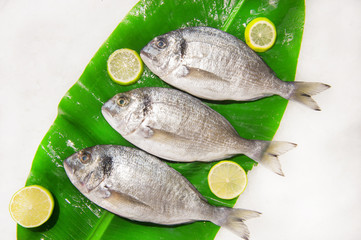 Dorada fish on a banana leaf