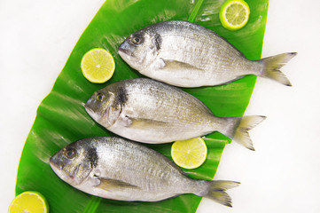 Dorada fish on a banana leaf