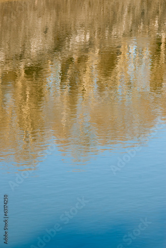 Tiber river with trees reflection
