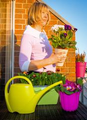 Bepflanzung mit Frühlingsblühern auf dem Balkon